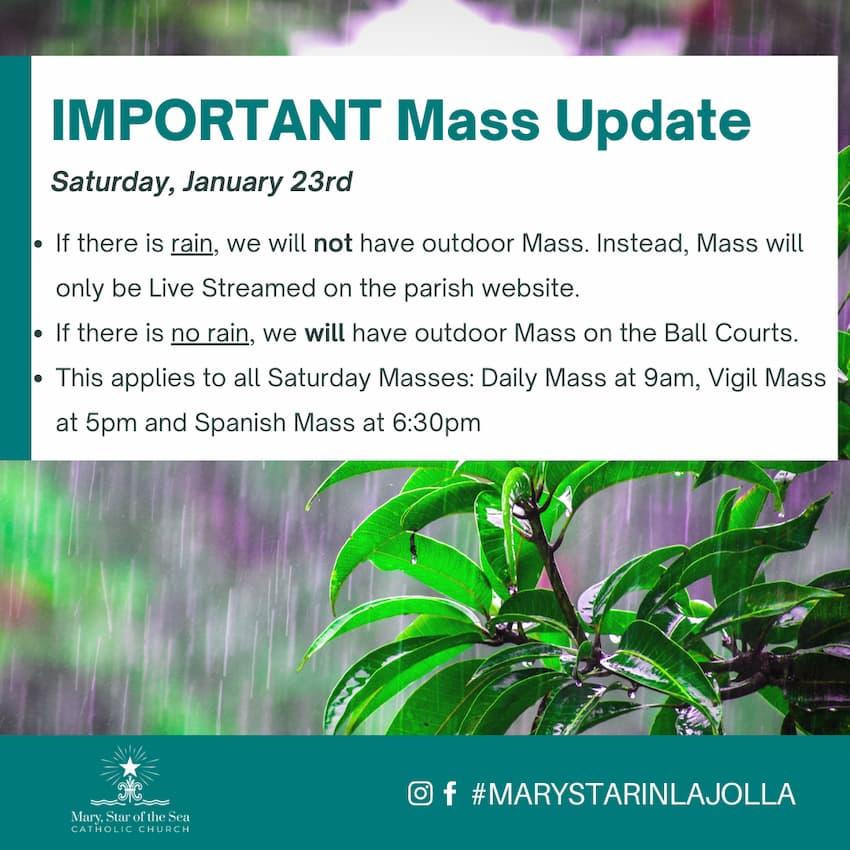 Important Mass Update: Saturday January 23rd 2021