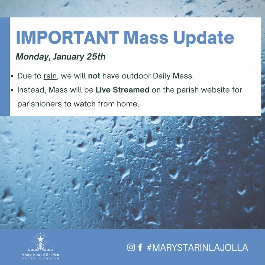 Mass Update for January 25th 2021