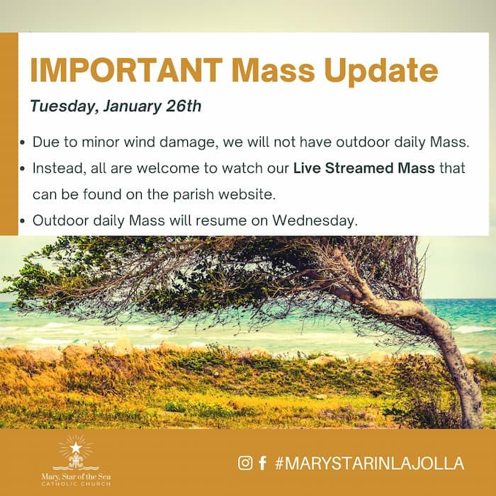 Mass Update: January 26th 2021