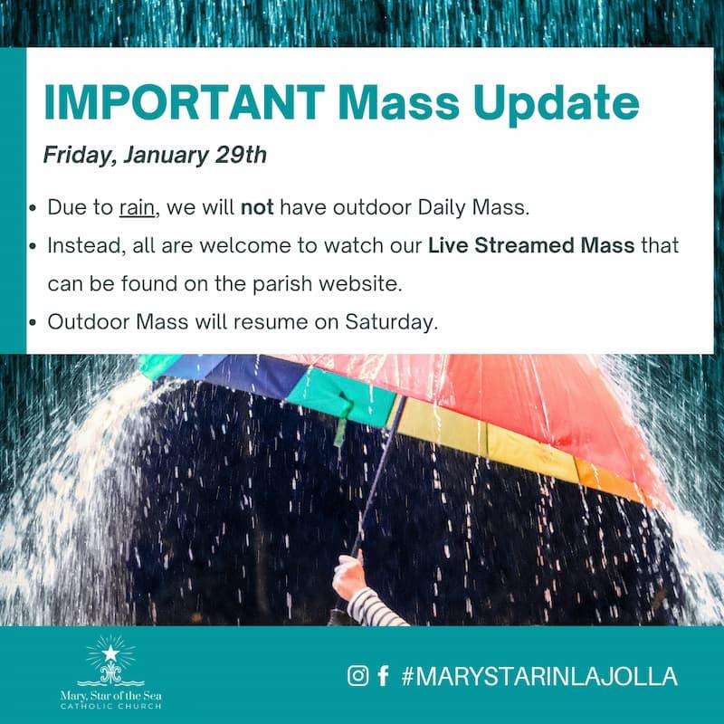 Mass Update: January 29th 2021