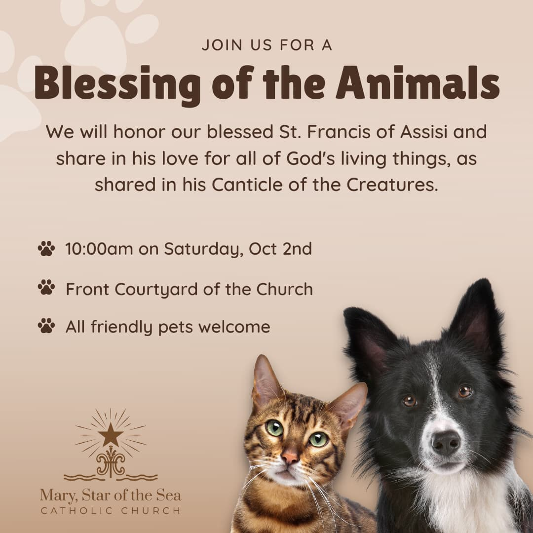 Join us for a Blessing of the Animals